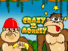 Crazy Monkey 2 на деньги