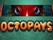 Игровой автомат Сокровища Осьминога онлайн