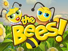 Онлайн на деньги в слот Пчелы