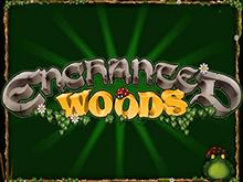 Enchanted Woods — онлайн-автомат на деньги